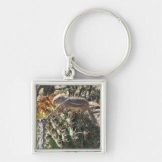 Grundeichhörnchen auf Fass-Kaktus Keychain Schlüsselanhänger