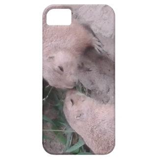 Grundeichhörnchen Etui Fürs iPhone 5