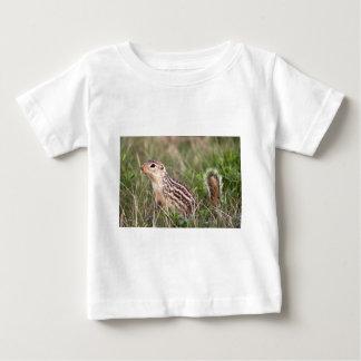 Grundeichhörnchen mit 13 Streifen Baby T-shirt