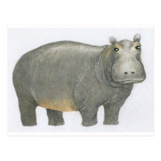 Grundlegendes Flusspferd Postkarte