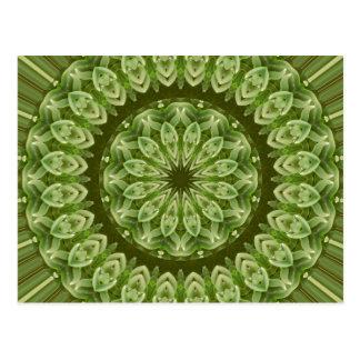 Grüne Anemonen-Mandala 2 Postkarte