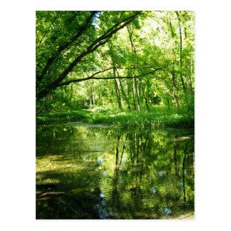 Grüne Aussicht Postkarte