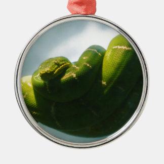 Grüne Baum-Boa Rundes Silberfarbenes Ornament