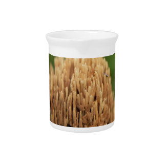 Grüne befleckende korallenrote Pilze (Ramaria Krug