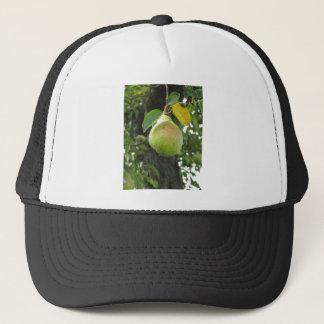 Grüne Birne des Singles, die am Baum hängt Truckerkappe