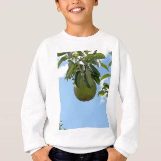 Grüne Birnen auf Baumasten Sweatshirt