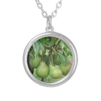 Grüne Birnen, die an einem wachsenden Birnenbaum Versilberte Kette