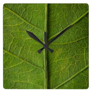 Grüne Blatt-Beschaffenheits-Wanduhr Quadratische Wanduhr