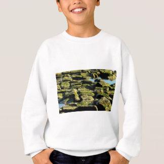 grüne Blockbeschaffenheit Sweatshirt