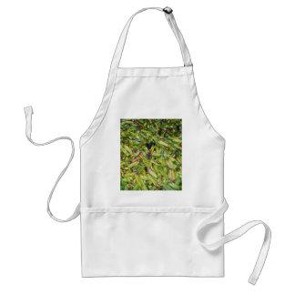 Grüne Bohnen… Schürze