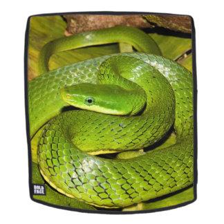 Grüne Bush-Ratten-Schlange Rucksack