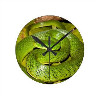 Grüne Bush-Ratten-Schlange Runde Wanduhr
