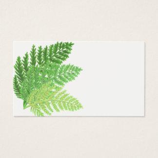 Grüne Farne Visitenkarte