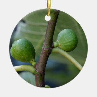 Grüne Früchte eines gemeinen Feigenbaums Keramik Ornament