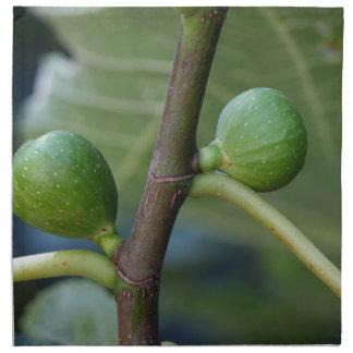 Grüne Früchte eines gemeinen Feigenbaums Stoffserviette