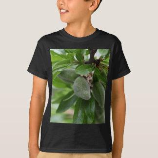 Grüne Früchte eines Mandelbaums T-Shirt