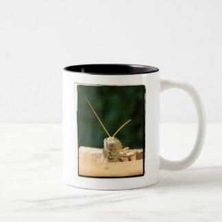 Grüne Heuschrecke Zweifarbige Tasse