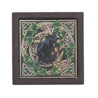 Grüne Hexe-magischer Pentagram und Katze Kiste