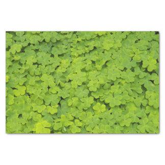Grüne Kleeblätter mit Blumen Seidenpapier