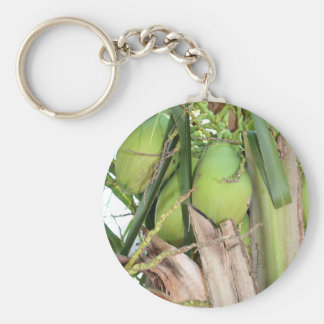 Grüne Kokosnüsse Schlüsselanhänger