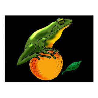 Grüne Kröte und Orange Postkarte