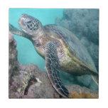 Grüne Meeresschildkröte Hawaiis Kachel