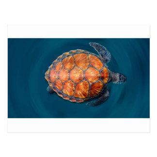 Grüne Meeresschildkröte Postkarte