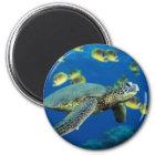 Grüne Meeresschildkröte Runder Magnet 5,1 Cm