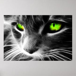 Grüne mit Augen Katze herauf nahen Druck Poster