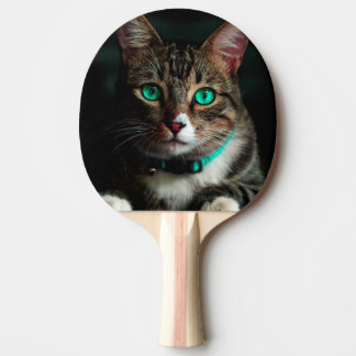 Grüne mit Augen Katze Tischtennis Schläger