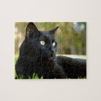 Grüne mit Augen schwarze Katze, die das Freien Puzzle