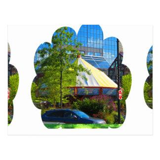 Grüne Natur-Fotografie Bostons USA Amerika Postkarte