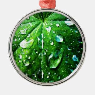 Grüne Natur treibt natürlicher Wassertropfen Silbernes Ornament