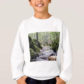 grüne Nebenflussschlucht Sweatshirt