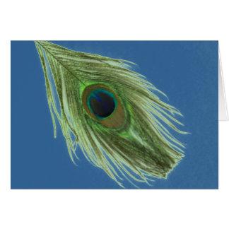 Grüne Pfau-Feder auf Blau Karte