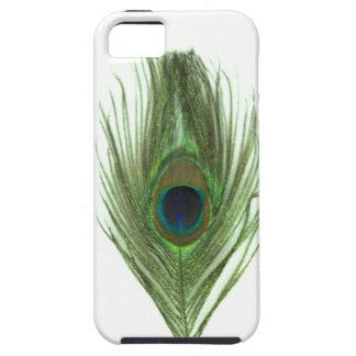 Grüne Pfau-Feder Etui Fürs iPhone 5