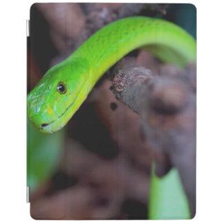 Grüne Pythonschlange-Schlange iPad Hülle