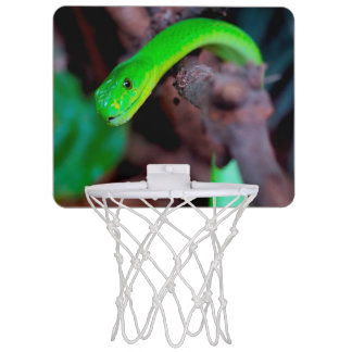 Grüne Pythonschlange-Schlange Mini Basketball Netz