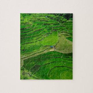 Grüne Reisterrassen, Philippinen Puzzle