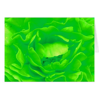 Grüne Rose Grußkarte