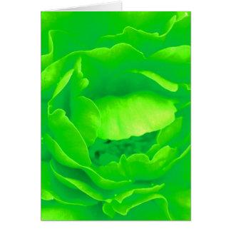 Grüne Rose Grußkarten