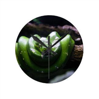 Grüne Schlange Runde Wanduhr
