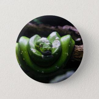 Grüne Schlange Runder Button 5,1 Cm