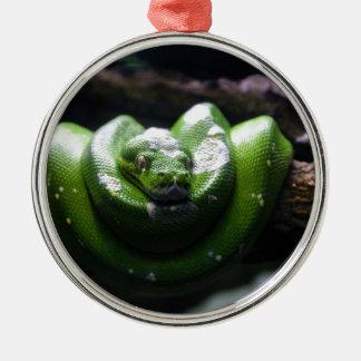 Grüne Schlange Rundes Silberfarbenes Ornament