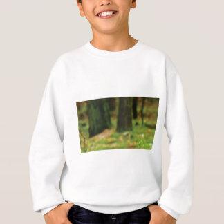 grüne Stümpfe des nassen Holzes Sweatshirt