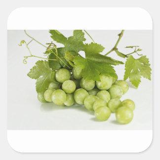 grüne Trauben Quadratischer Aufkleber