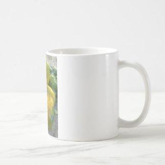 Grüne und gelbe Paprikaschoten Kaffeetasse