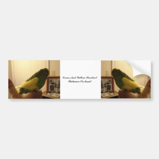 Grüne und gelbe Parakeet-Balancen an Hand Autoaufkleber