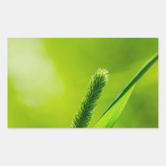 Grüne Welt Rechteckiger Aufkleber