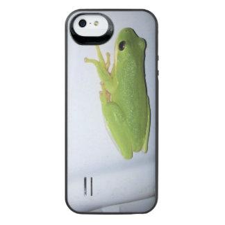 Grüner Baum-Frosch iPhone SE/5/5s Batterie Hülle